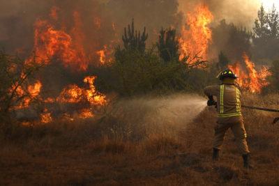 Conaf reportaba 43 incendios forestales activos a nivel nacional hasta anoche