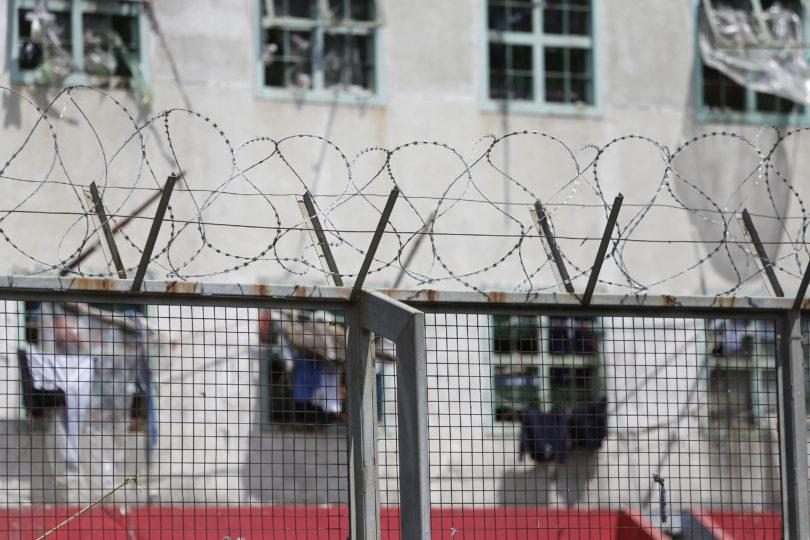 """Cerca de 50 reos cumplen requisitos para optar al indulto de """"Ley Humanitaria"""""""