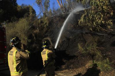 Conaf reportaba 29 incendios forestales activos hasta anoche