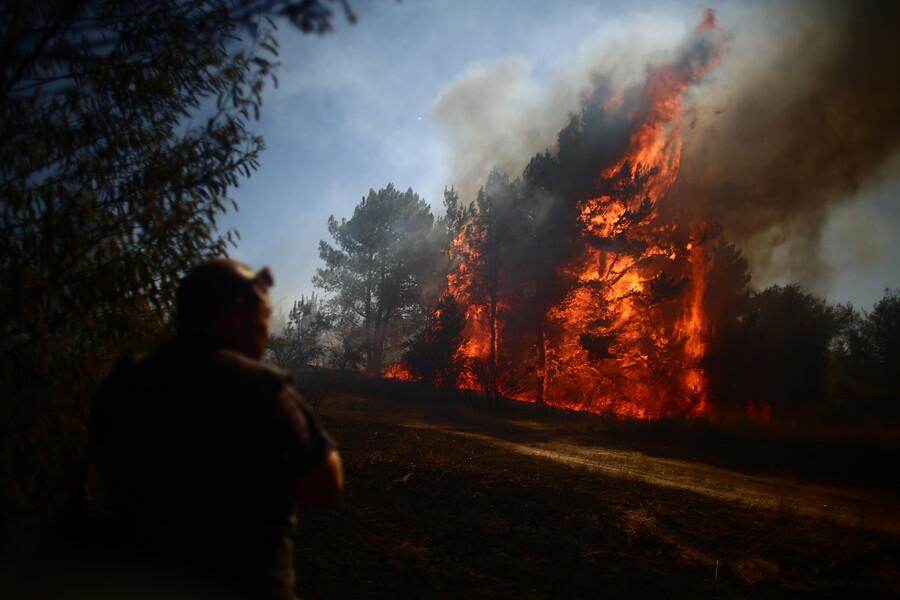 """""""Declaran alerta roja en Paredones por incendio cercano a viviendas"""""""