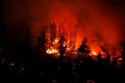VIDEOS+FOTOS | Incendio forestal afecta a ladera de cerro San Cristóbal