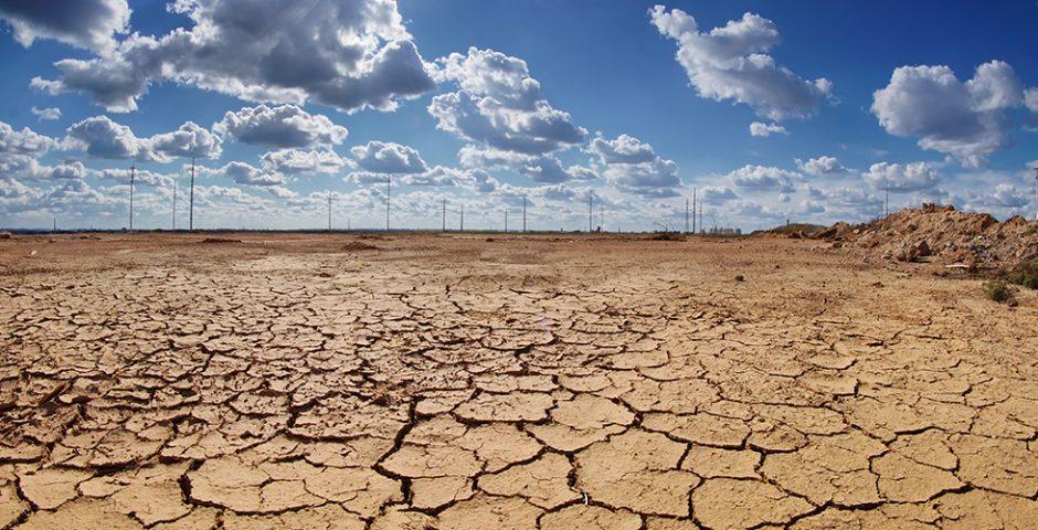 Más allá de una narrativa: políticas públicas para enfrentar el cambio climático