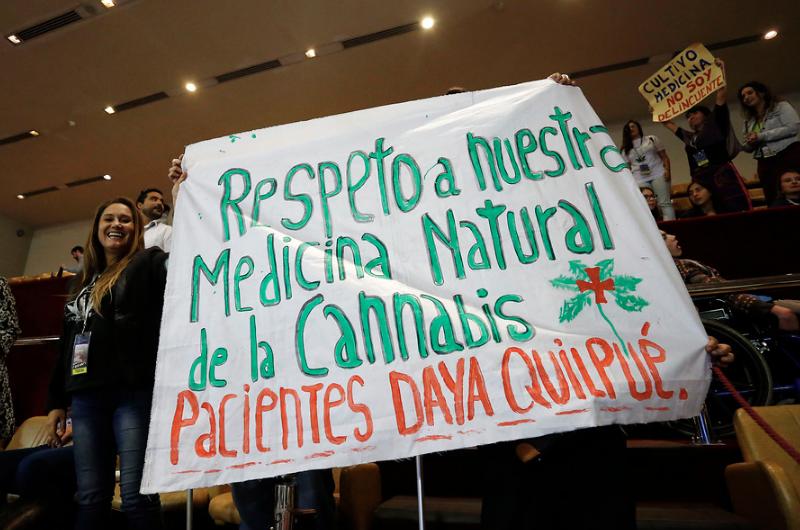 """""""El millonario negocio de la marihuana medicinal en Chile:"""
