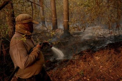 Incendios forestales: ya van más de 40 mil hectáreas quemadas