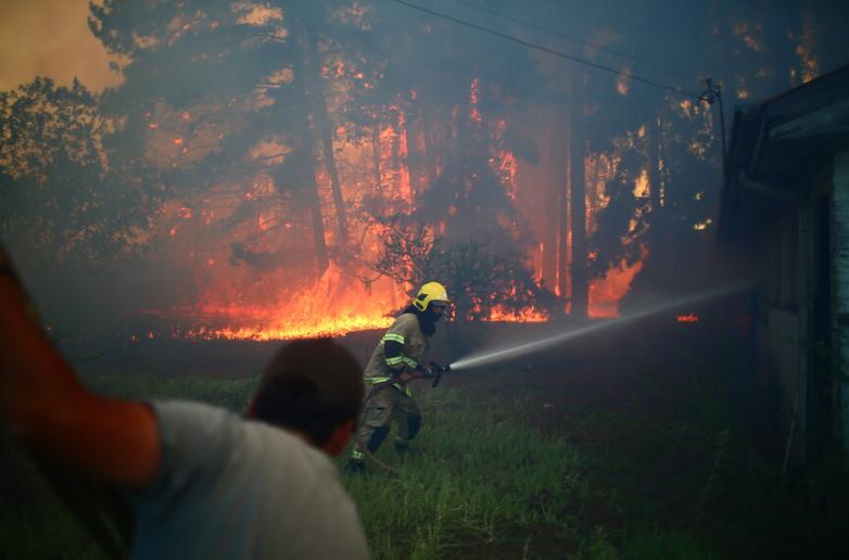 """""""Más de 2.500 hectáreas lleva consumido incendio forestal en región del Biobío"""""""