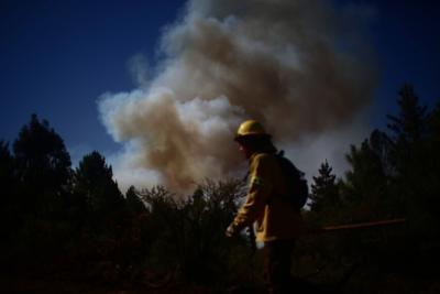 Detienen a cinco individuos por provocar incendio forestal en Ancud