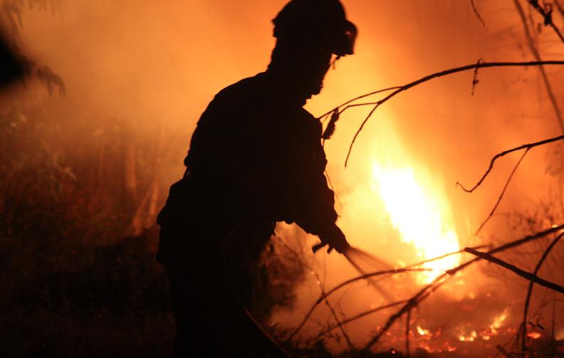 Brigadistas de Angol amenazan paralización en plena emergencia de incendios forestales