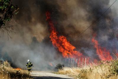 Gobierno extendió el Estado de Excepción en el sur por incendios forestales