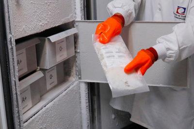 Confirman primer caso de Virus Hanta en La Araucanía durante 2019