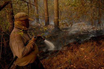 Conaf anuncia querella por ataque a brigadista que combatía incendios en el sur