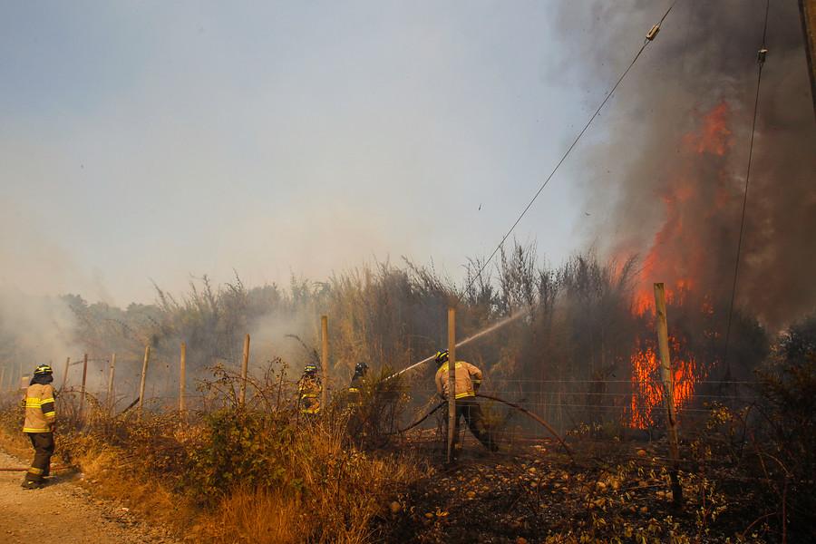 """""""Casas afectadas por los incendios en La Araucanía estarán reconstruidas en 2020"""""""
