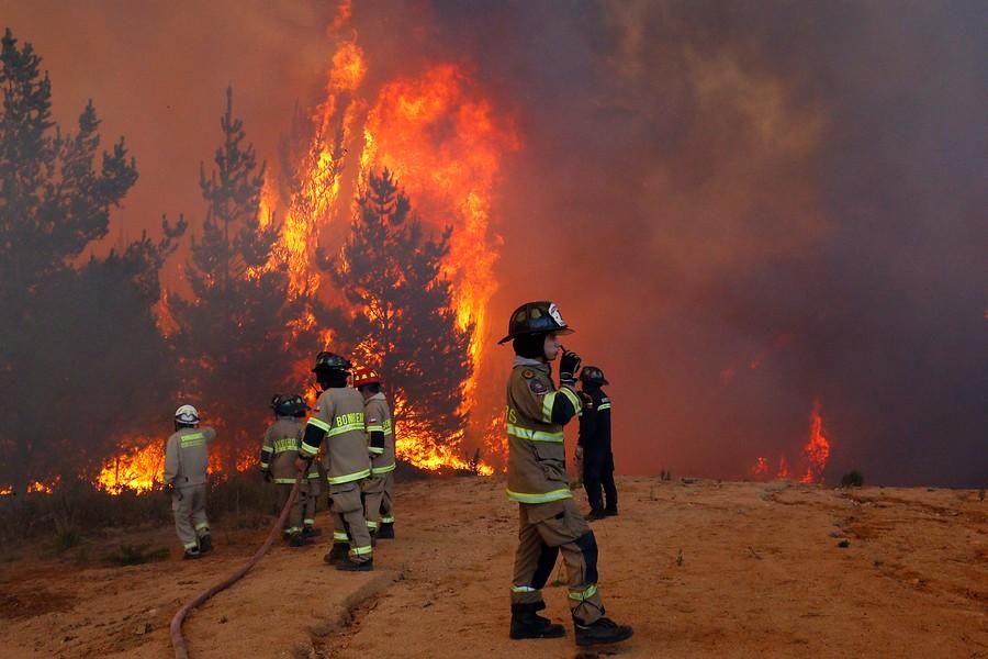 """Alcalde UDI de Cochrane por incendios forestales: """"No quiero pensar que el Presidente no esté pensando en Aysén"""""""