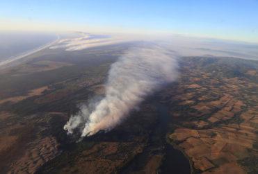 Incendios forestales: solo 11% de siniestros se han extinguido
