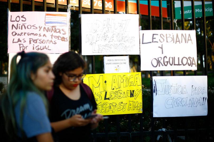 Movilh inicia campaña para encontrar a atacantes de Carolina Torres