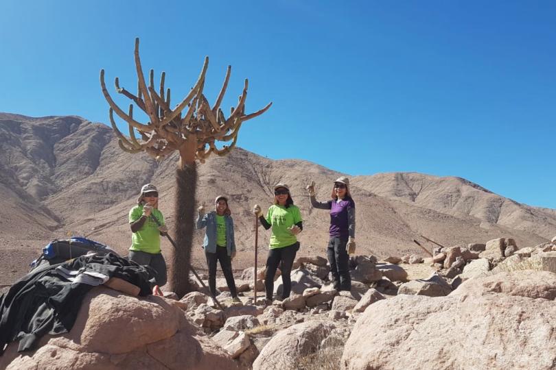 Vive tus parques: 500 jóvenes voluntarios trabajarán en 12 parques nacionales del país