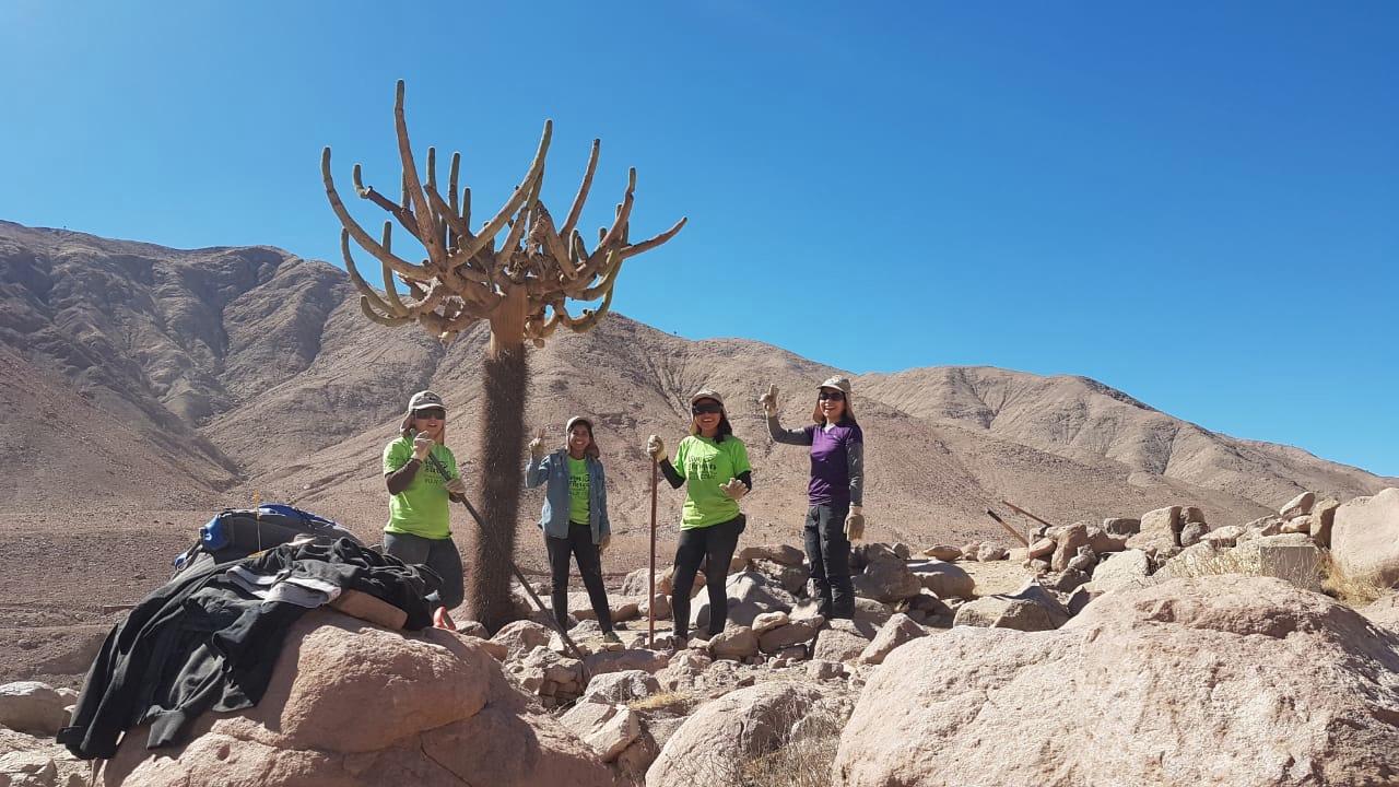 """""""Vive tus parques: 500 jóvenes voluntarios trabajarán en 12 parques nacionales del país"""""""