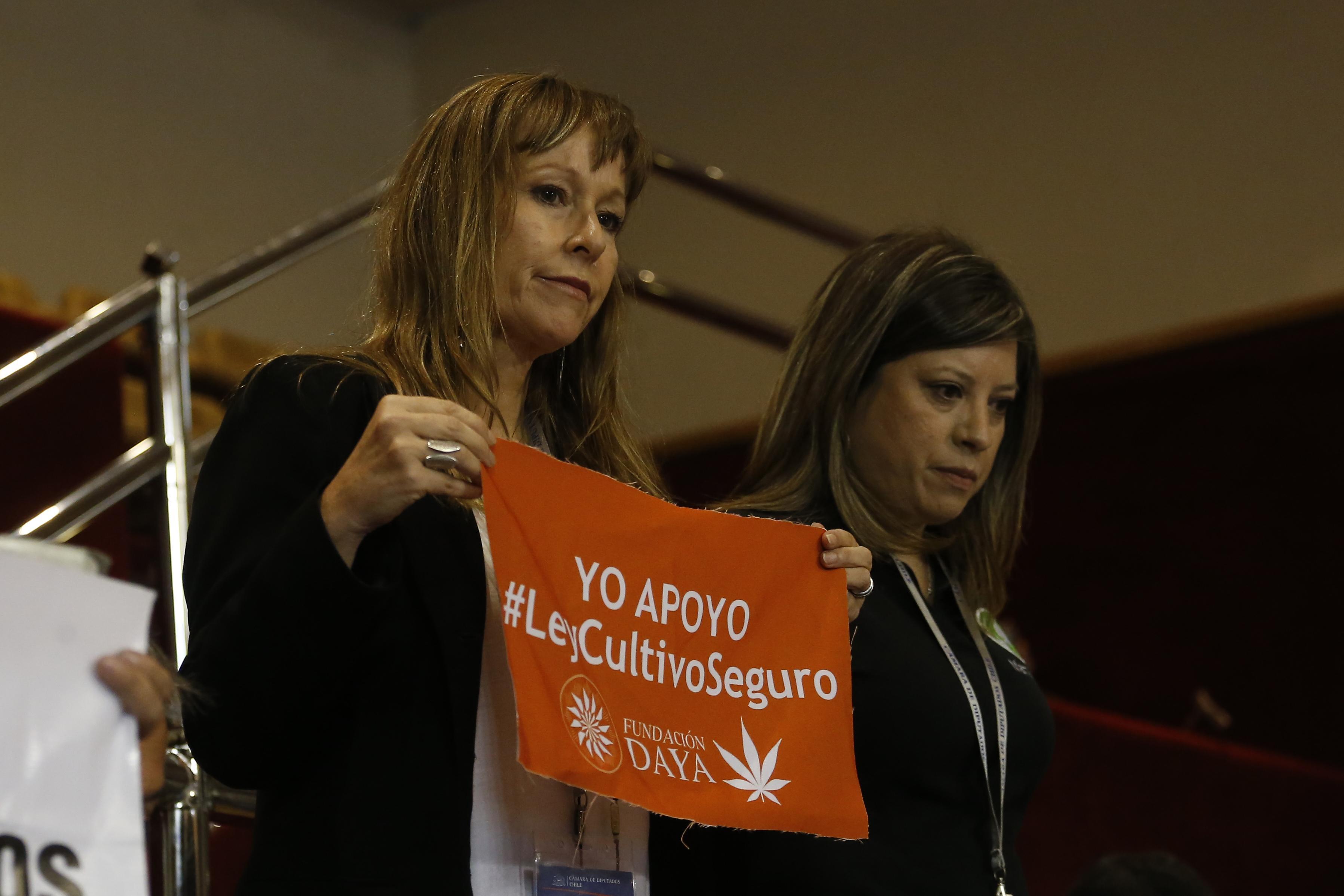 """""""Colegio Médico pone en duda las propiedades """"medicinales"""" de la marihuana y Ana María Gazmuri  reacciona con duro mensaje"""""""