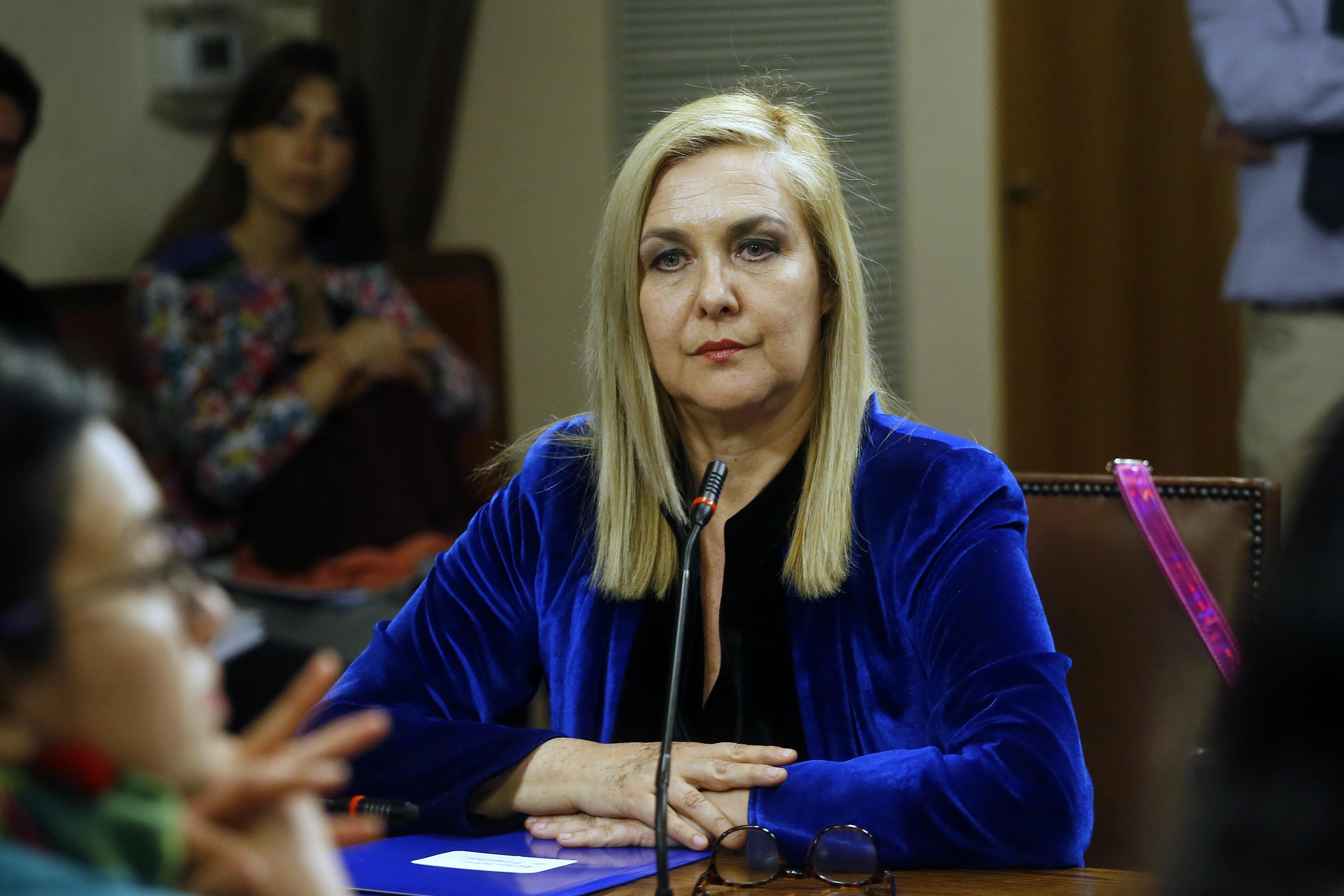 Pamela Jiles acusa a gobernadora del Maipo de no autorizar marcha feminista en San Bernardo