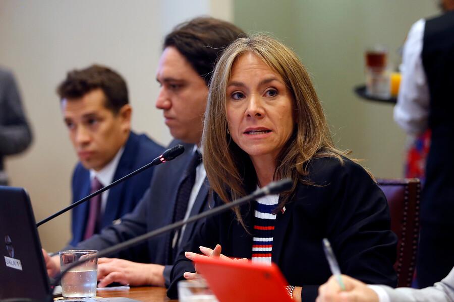 """Ministra de Energía tras rechazo de CGE a la compra de medidores: """"Voy a perseverar con ellos"""""""