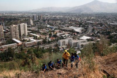 Reforestarán el cerro San Cristobal con 9 mil árboles luego de los incendios