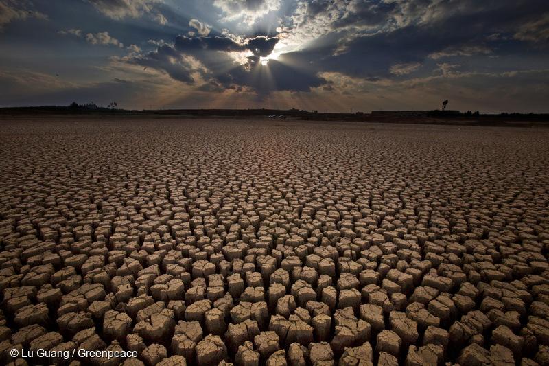 Día Mundial del Agua: Chile aparece entre los 30 países con mayor riesgo hídrico