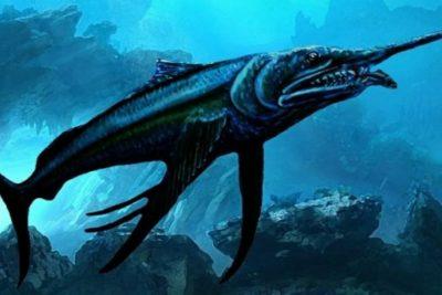 """Paleontólogo bautiza prehistórico pez espada como """"Camilo Catrillanca"""""""