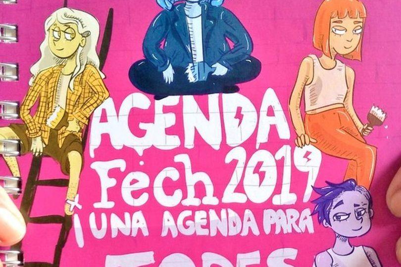 """Fech nuevamente incluyó un instructivo de """"aborto seguro"""" en su agenda"""