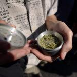 La historia del terror del arquitecto chileno preso en Bali por portar cinco semillas de marihuana
