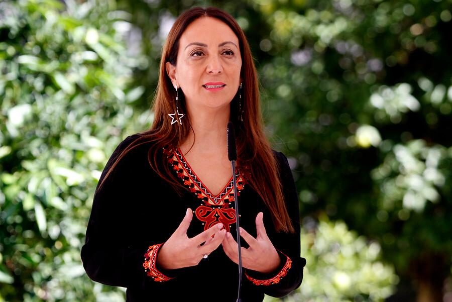 Gobierno confirmó que ministra de Energía sigue contando con el apoyo de Piñera