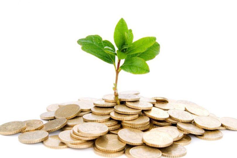 Capital Semilla Corporativo: la nueva vía del emprendimiento en grandes empresas