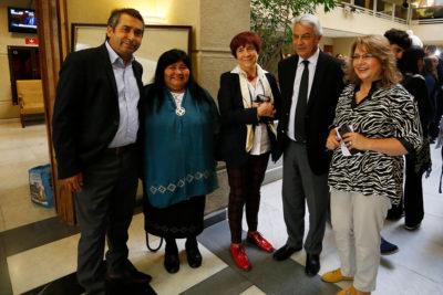 Diputada PS confirma que citarán a Ubilla por compra de terreno en La Araucanía