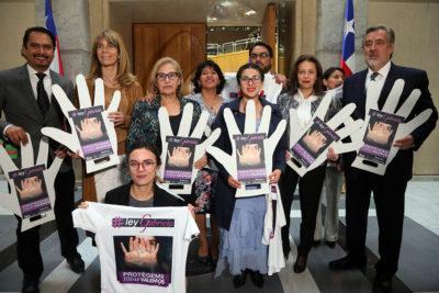 Parlamentarios comprometen celeridad para ley que sanciona violencia en pololeo
