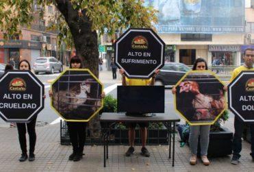 ONG acusó a panaderías Castaño de crueldad animal en la elaboración de sus productos