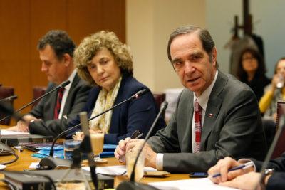 """Ministro Larraín sobre Dobra Lusic: """"Son los senadores los que tienen la última palabra"""""""