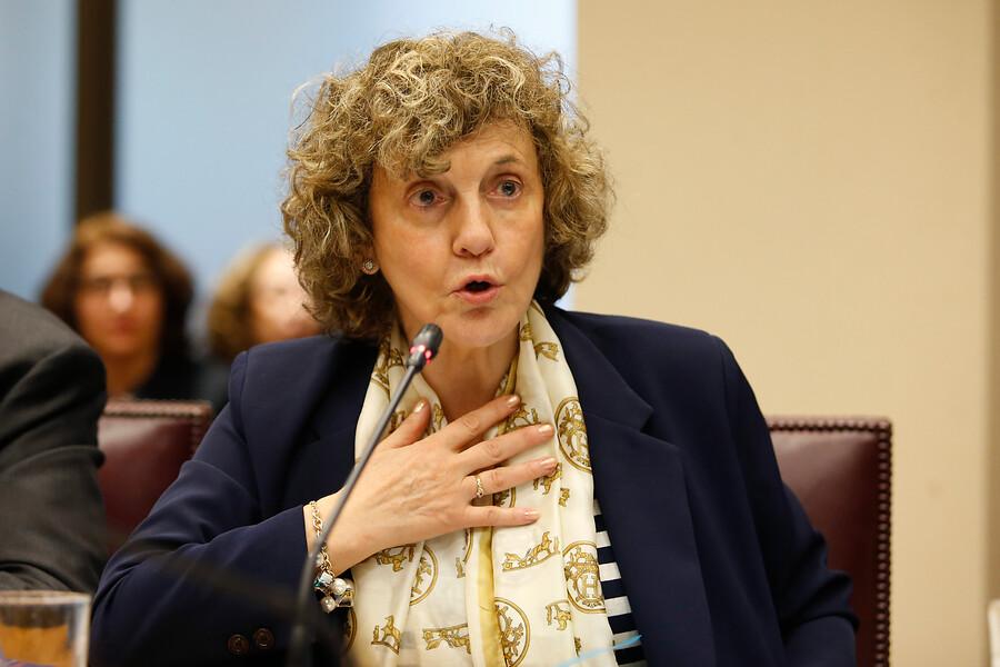 Informe judicial reveló llamados de Dobra Lusic para recomendar a cuestionado notario
