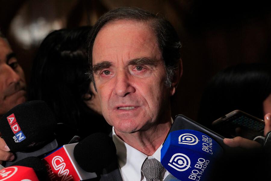 """""""Ministro Larraín: Dobra Lusic pidió que retiraran su nombre de la postulación"""""""