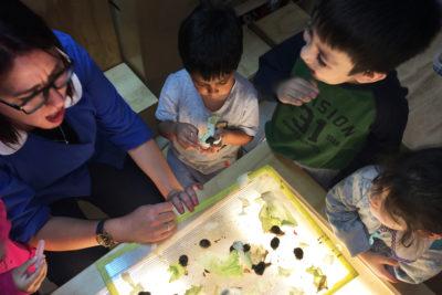 Educación Integral: un buen proyecto común post pandemia
