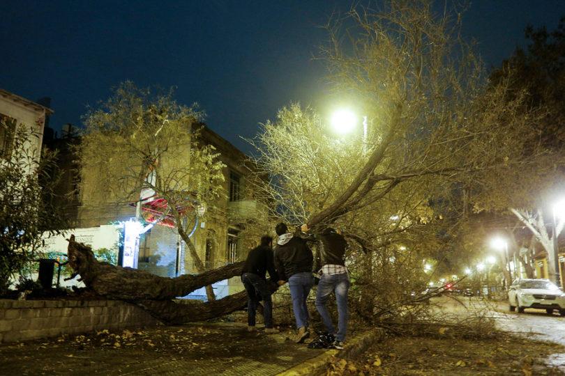 Fuerte viento y caída de árboles deja sin electricidad a nueve comunas de Santiago