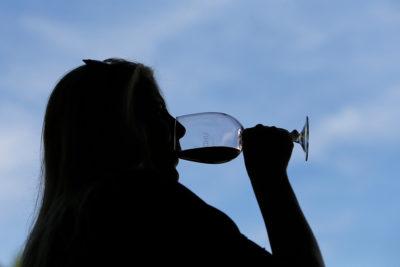 Chilenos superaron en 40% el promedio mundial de consumo de alcohol
