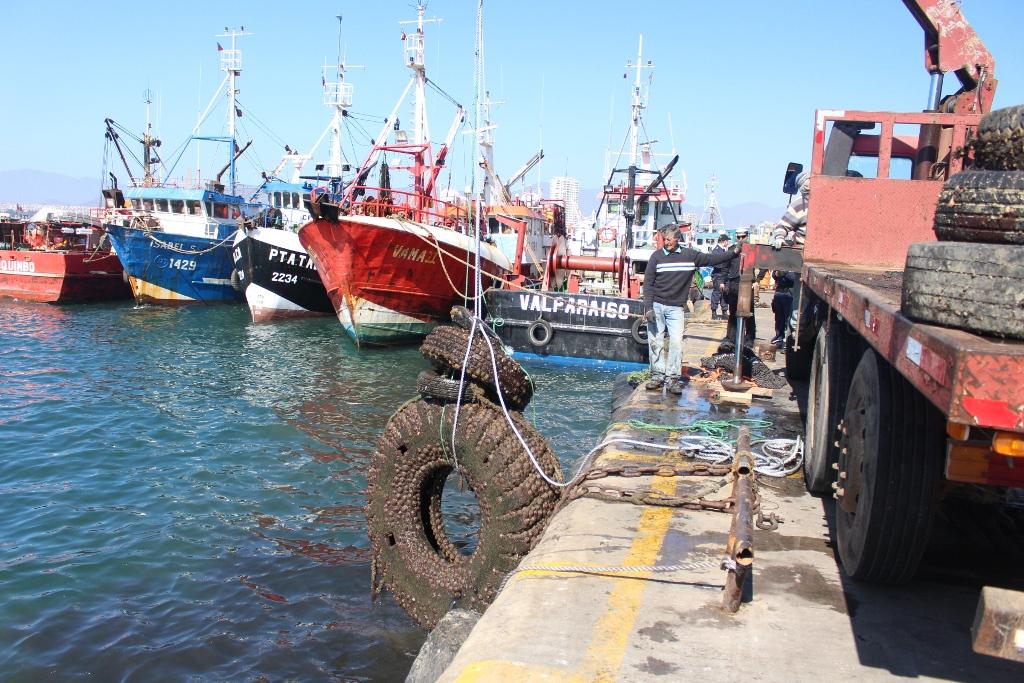 Sacan más de 30 toneladas de basura del fondo marino en Coquimbo: la mayoría eran neumáticos