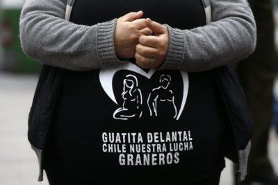 """Criterios y quiénes pueden postular a operación gratuita de """"guatita de delantal"""""""