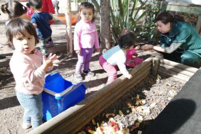 Junji integra educación medioambiental al currículo de la primera infancia