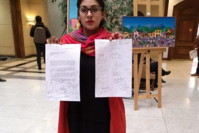 Diputados de oposición envían carta a Piñera exigiendo que pague contribuciones de su casa en Caburgua por 30 años