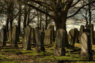 Washington aprobó ley para el compostaje de restos humanos