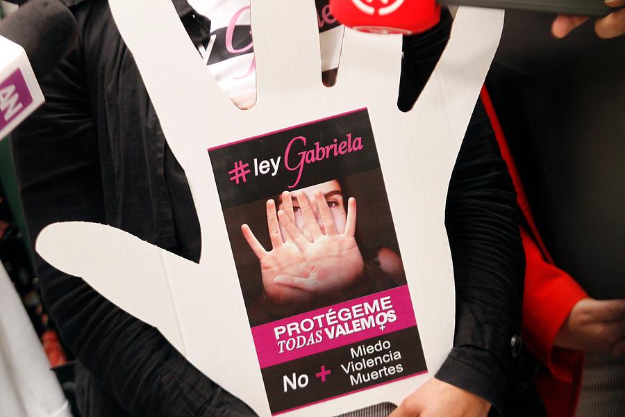 """Gobierno anuncia suma urgencia para proyecto """"Ley Gabriela"""""""