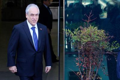 """Alcalde de Pucón por citación a declarar a Piñera: """"Esto no es un delito, es una falta"""""""