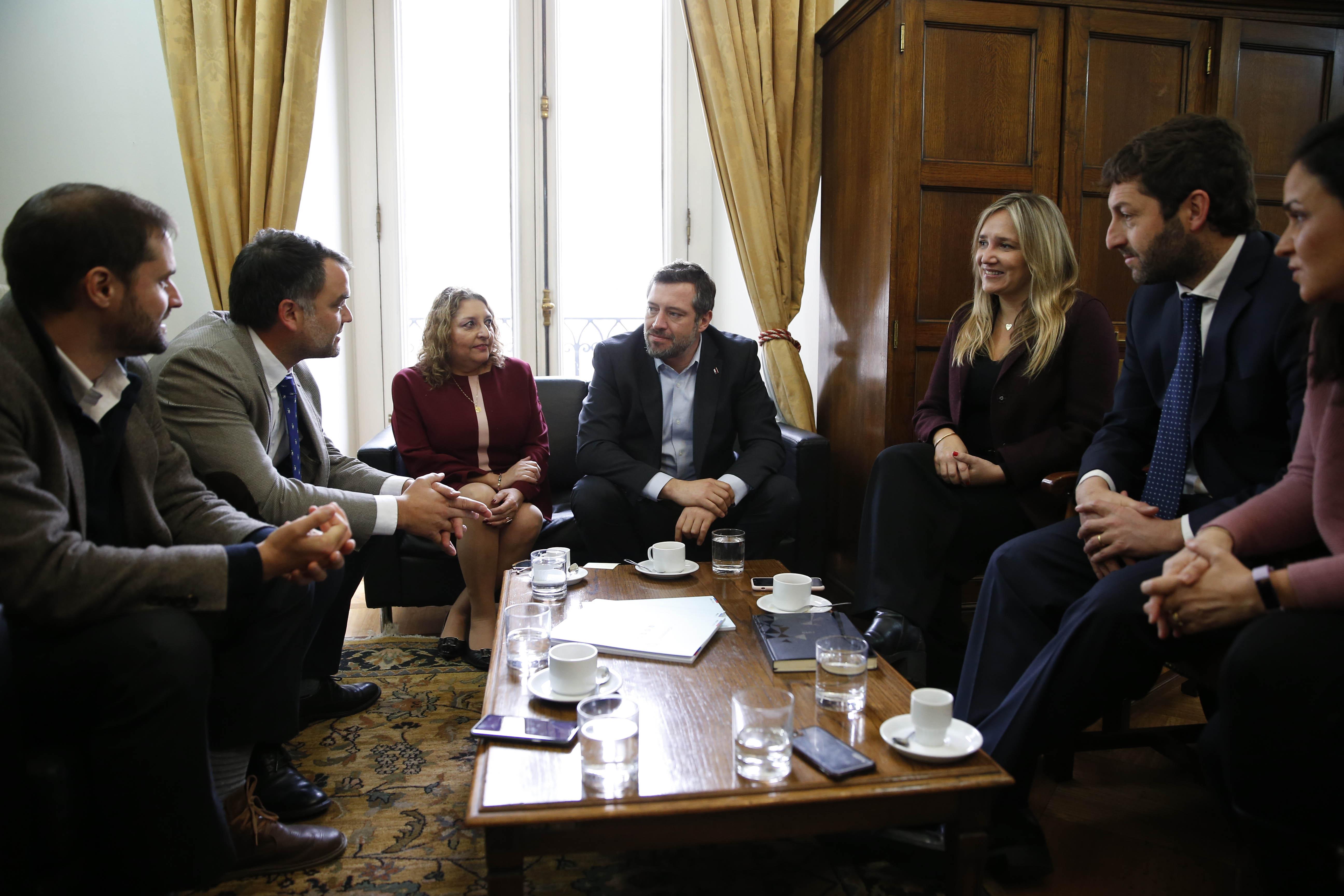 """UDI pide al ministro Sichel que trabaje en una """"agenda de integración social"""""""
