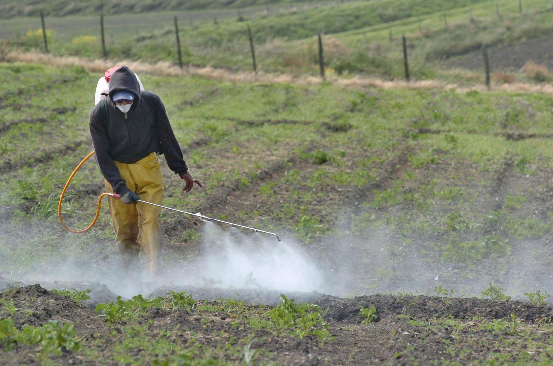 Detectan presencia de plaguicidas en agricultores y escolares de Región del Maule