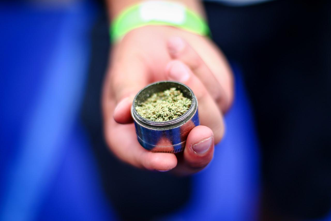 38,8% de los trabajadores jóvenes reconoce consumo de marihuana en último año
