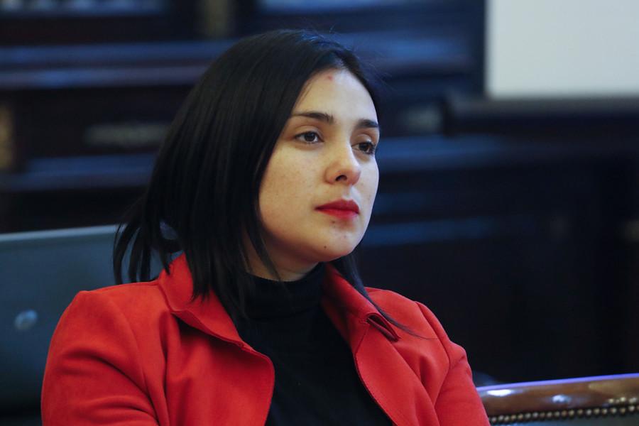 """Karol Cariola por Venezuela: """"Hay sectores que han intentado hacer abuso político de nuestra declaración"""""""